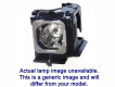 HITACHI CP-CX251N Genuine Original Projector Lamp