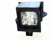 LIESEGANG DV 3500 vario+ Genuine Original Projector Lamp