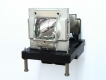 DIGITAL PROJECTION EVISION WUXGA 7500 Genuine Original Projector Lamp