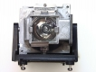 PLANAR PD7010 Genuine Original Projector Lamp