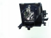 TOSHIBA TDP F1 PLUS Genuine Original Projector Lamp