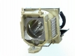 TOSHIBA TDP P75 Diamond Projector Lamp